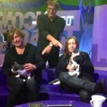 «Би-2» и котэ-близнецы Лева & Шура
