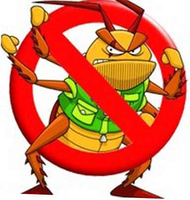 Уничтожение домашних тараканов